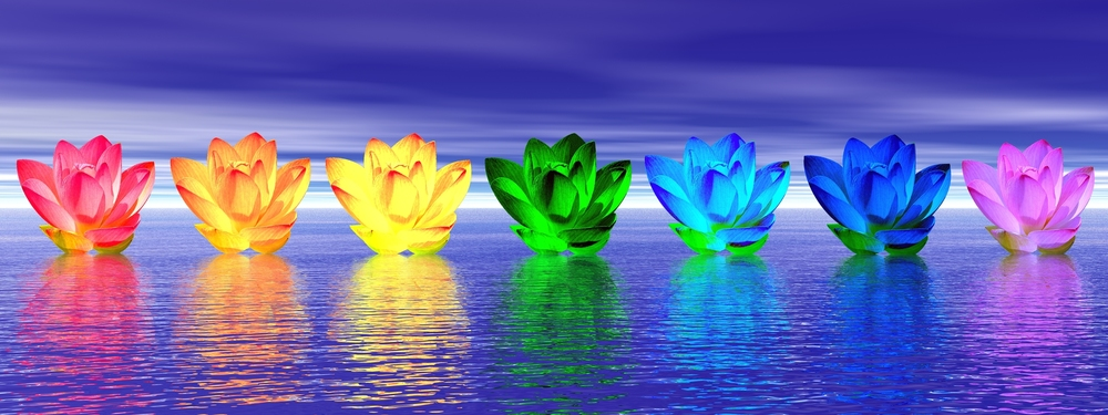 Chakra lilies